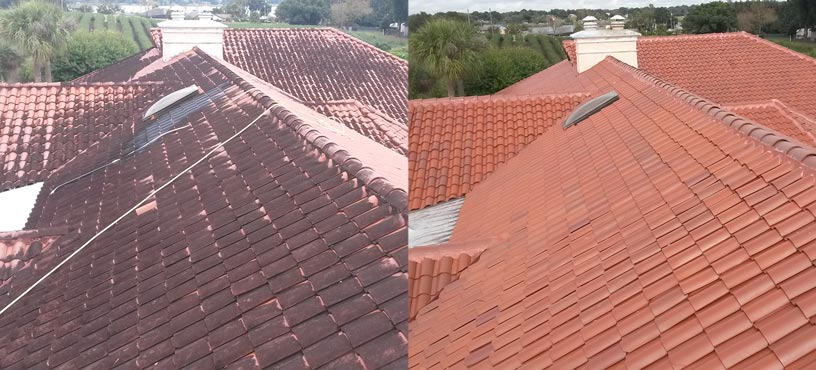 Amazing Orlando Roof Cleaning